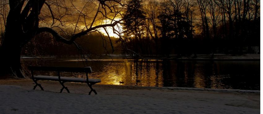 De kracht van sap en detox in de winter